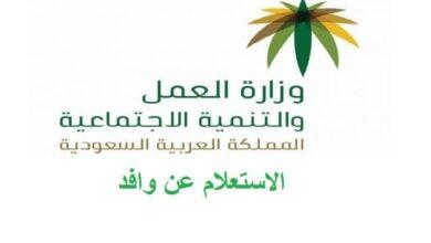 الاستعلام عن موظف وافد برقم الاقامة في السعودية