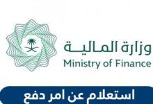 الاستعلام عن امر دفع بوزارة المالية السعودية الكترونيا 1442