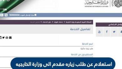 الاستعلام عن طلب مقدم الى وزارة الخارجية السعودية