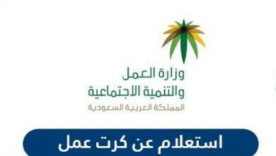 استعلام عن كرت عمل في وزارة العمل والتنمية الاجتماعية السعودية