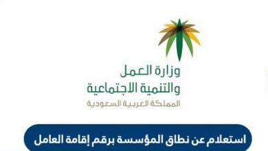 الاستعلام عن نطاق المؤسسة برقم الاقامة السعودية