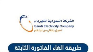 رابط شركة الكهرباء السعودية الغاء اشتراك الفاتورة الثابتة Se Com Sa Archives منوعات