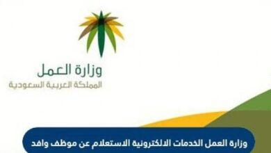 وزارة العمل الخدمات الإلكترونية الاستعلام عن موظف وافد