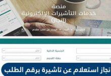 الاستعلام عن تأشيرة برقم الطلب عبر منصة انجاز