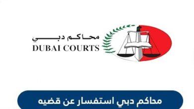 طلب الاستعلام عن قضية عبر موقع وزارة العدل في الامارات